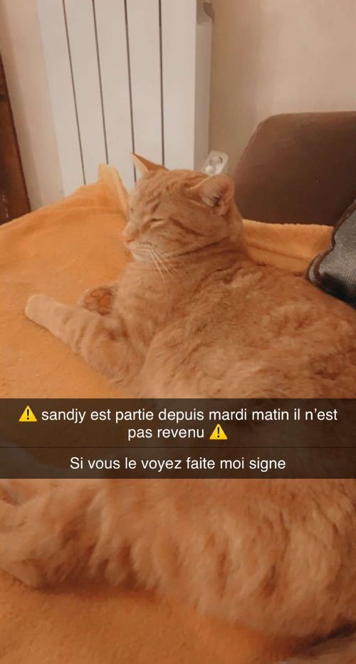 Sandjy