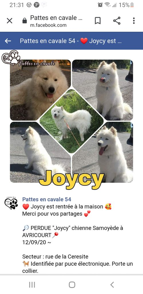 Joycy