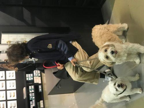 Bobby et Teddy